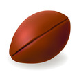 american ball vector image