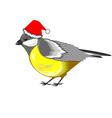 A cute Christmas titmouse vector image