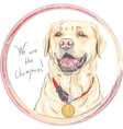 dog breed Labrador Retriever champion vector image vector image