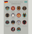 dogs by country of origin german dog breeds vector image