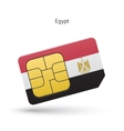 Egypt mobile phone sim card with flag vector image