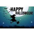Happy halloween sign with witch on broom vector image