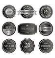 set premium silver labels vector image vector image