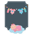 square frame with basleeping vector image