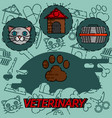 veterinary pharmacy flat concept icons vector image