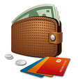 wallet and credit cards vector image