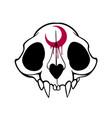cartoon animal skull with moon on forehead vector image vector image