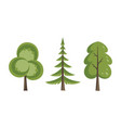 decorative trees icon set flat trees in a flat vector image