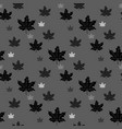 endless pattern with maple leaves on purple vector image