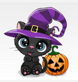 halloween cartoon cat with pumpkin on a white vector image vector image