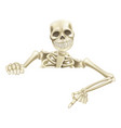 halloween skeleton pointing down vector image vector image
