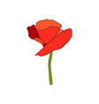 red poppy full-blown flower and stem side view vector image vector image