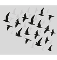 silhouettes flying birds vector image vector image
