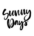 summer brush lettering composition vector image vector image