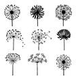 set of doodle dandelions decorative elements for vector image