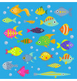 aquarium flat fish ocean breeds underwater vector image