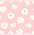 arabian jasmine on light pink background vector image