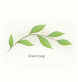 handdrawn watercolour style nature vector image