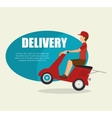 man delivering boxes design isolated vector image vector image
