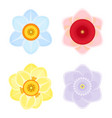 tender daffodils several colors beautiful open vector image
