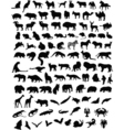 100 animals vector | Price: 1 Credit (USD $1)