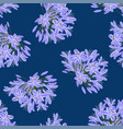blue purple agapanthus on indigo blue background vector image vector image