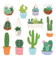 cactus cartoon botanical cacti potted cute vector image vector image
