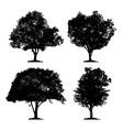 silhouette icon tree set vector image vector image