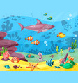 underwater life wild animals in ocean or sea vector image