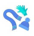 Scarf hat and gloves vector image