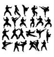 karate sport vector image vector image