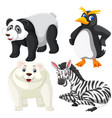 set of isoalted animal vector image vector image