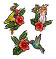 tropical birds embroidery patches vector image vector image