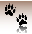Animal Tracks vector image vector image