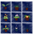 assembly flat shading style icons houseplants vector image vector image