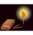 Matchbox and lighted match vector image vector image