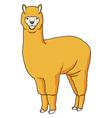 Alpaca Llama vector image