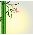 bamboo butterfly background vector image