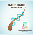 hair care vector image vector image