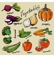 hand drawn vegetables vector image vector image