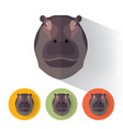 hippo portrait with flat design vector image
