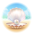 Realistic Shell Round Composition vector image vector image