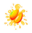 sliced ripe mango juice splashing colorful fresh vector image
