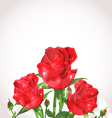 Three roses for design wedding card vector image vector image
