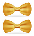 golden bow tie gentleman isolated gold 3d icon vector image vector image