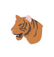 portrait of an orange tiger vector image vector image