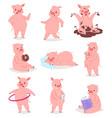 cartoon pig piglet or piggy character vector image vector image