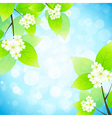Green Leaves with Flowers in the Sky vector image vector image