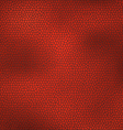 Leather texture vector image vector image
