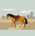 saddled horse in country landscape vector image